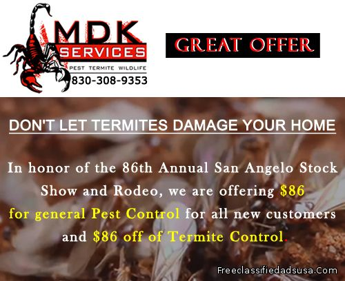 Don't Let Termites Damage Your Home