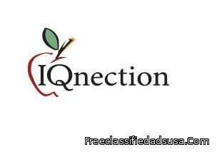 IQnection Web Design & Marketing
